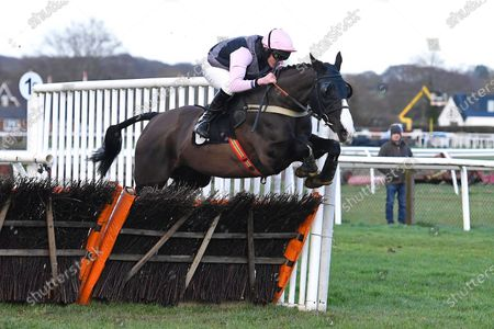 Stock Image of The Tin Miner ridden by Tom Cannon and trained by Chris Gordon jump the last first time around in The Strong Flavours Catering Handicap Hurdle   during Horse Racing at Plumpton Racecourse on 10th February 2020