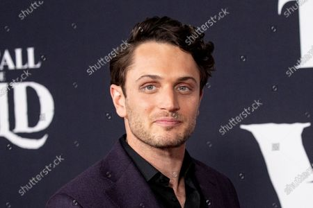 Stock Image of Colin Woodell poses on the red carpet prior to the world premiere of 20th Century Studios' film 'The Call of the Wild' at El Capitan Theater in Hollywood, California, USA, 13 February 2020. The film will be released in the USA on 21 February.
