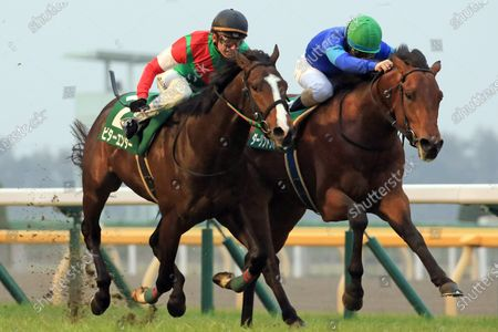 , Tokyo, Darlington Hall (right) with Christophe Lemaire up wins the Kyodo News Hai at Fuchu racecourse, JPN.