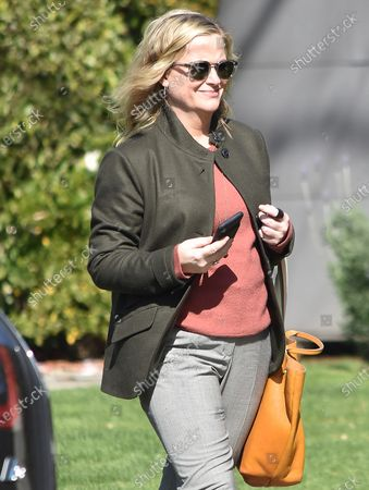 Editorial picture of Amy Poehler out and about, Beverly Hills, Los Angeles, USA - 15 Feb 2020