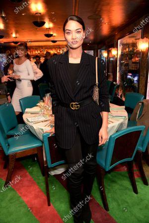 Stock Picture of Shanina Shaik