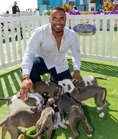 Stock Photo of Rashad Jennings