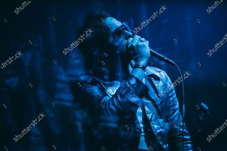 Stock Image of Julian Casablancas - The Strokes