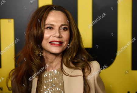 "Stock Image of Lena Olin, a cast member in the Amazon Prime Video series ""Hunters,"" poses at the premiere of the show at the Directors Guild of America, in Los Angeles"