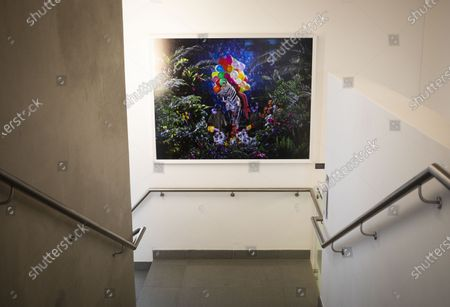 Stock Picture of An artwork by artist Athi-Patra Ruga is seen at the newly opened Javett Art Centre In Pretoria, South Africa, 20 September 2019. The art gallery is part of the University of Pretoria's and aims to  engage with the public by educating communities about the art of Africa, encouraging interaction and engagement. Aside from temporary exhibitions the gallery houses two permanent collections; the Javett Foundation's collection of 20th century South African art and the Mapungubwe Gold, an archeological collection which is historically and culturally important for South Africa, the southern African region and the world.