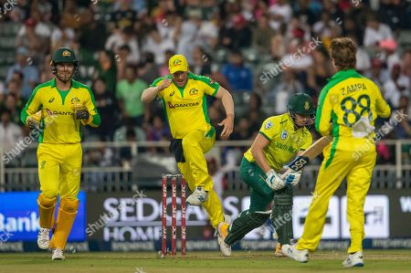Australia's wicketkeeper Alex Carey, left, with captain Aaron Finch, second left, celebrates the dismissal of South Africa's batsman David Miller, second from right, during the 1st T20 cricket match between South Africa and the Australia at Wanderers stadium in Johannesburg, South Africa