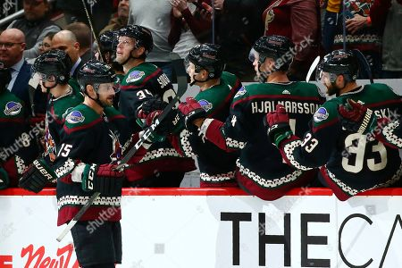 Arizona Coyotes center Brad Richardson celebrates his goal against the Tampa Bay Lightning with Carl Soderberg (34), Aaron Ness (42), Niklas Hjalmarsson (4) and Alex Goligoski (33) during the second period of an NHL hockey game, in Glendale, Ariz