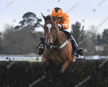 Stock Picture of Foxpro ridden by Lizzie Kelly and trained by Jane Williams clears the last in The Racehorse Sanctuary Remembers Moorcroft Boy Beginners' Chase during Horse Racing at Fontwell Park Racecourse on 23rd February 2020