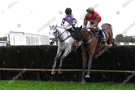 Stock Photo of Alcala left ridden by Angus Cheleda and Bob and Co ridden by David Maxwell both trained by Paul Nicholls jump the last in The Fairmile Snacks Open Hunters' Chase   during Horse Racing at Fontwell Park Racecourse on 23rd February 2020