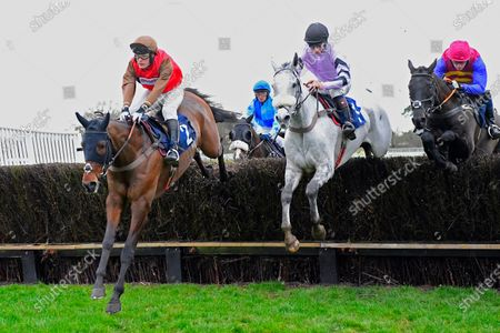 Bob and Co ridden by David Maxwell left and Alcala middle ridden by Angus Cheleda and both trained by Paul Nicholls jump the last in The Fairmile Snacks Open Hunters' Chase  during Horse Racing at Fontwell Park Racecourse on 23rd February 2020