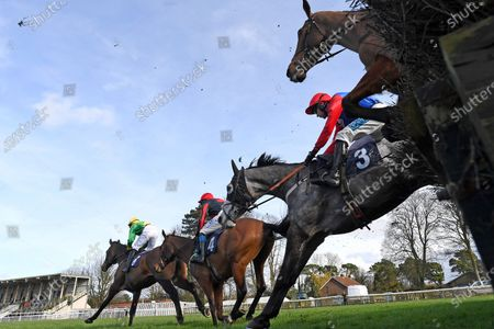 Editorial picture of National Spirit Hurdle, Horse Racing, Fontwell Park Racecourse, Arundel, West Sussex, United Kingdom - 23 Feb 2020