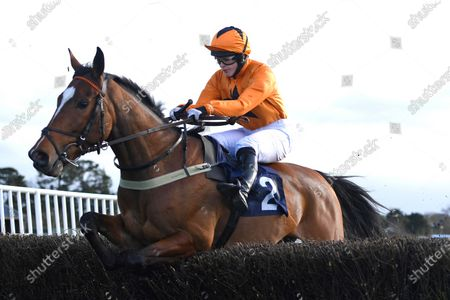 Editorial image of National Spirit Hurdle, Horse Racing, Fontwell Park Racecourse, Arundel, West Sussex, United Kingdom - 23 Feb 2020