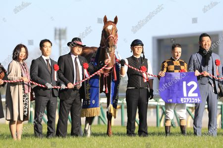Editorial picture of Horse Racing - 23 Feb 2020