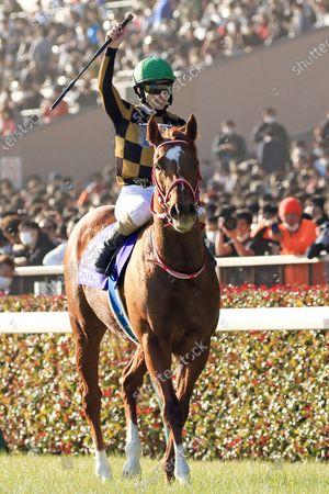 Editorial image of Horse Racing - 23 Feb 2020