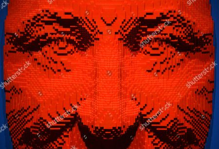 """Stock Picture of The sculpture """"Facemask,"""" a self-portrait of contemporary artist Nathan Sawaya made out of 10,770 LEGO bricks, is pictured at a media preview of """"The Art of the Brick"""" exhibition at the California Science Center, in Los Angeles. The exhibit, which features more than 100 works of art created from over one million LEGO bricks by Sawaya, opens on February 28"""