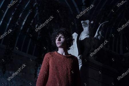 Stock Image of Finn Wolfhard as Miles Fairchild