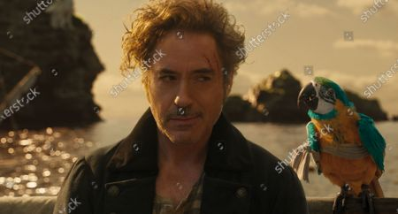 Robert Downey Jr. Dr. John Dolittle and Parrot Polynesia (Emma Thompson)