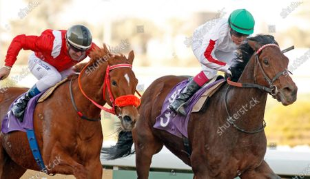 MATMON (right, Lisa Allpress) beats MOTAYAMMEN (left, Olivier Peslier) in The International Jockeys Challenge Handicap Round1 King Abdulaziz Racetrack, Riyadh, Saudi Arabia