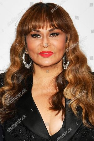 Stock Image of Tina Knowles