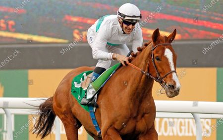 CALL THE WIND (Olivier Peslier) wins The Longines Turf Handicap King Abdulaziz Racecourse, Riyadh, Saudi Arabia