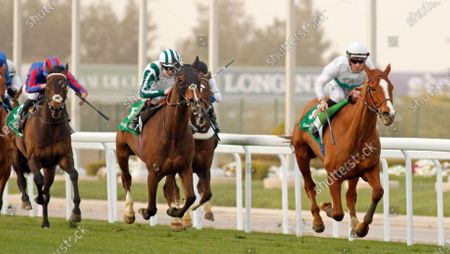 CALL THE WIND (Olivier Peslier) beats MEKONG (centre) and PRINCE OF ARRAN (left) in The Longines Turf Handicap King Abdulaziz Racecourse, Riyadh, Saudi Arabia