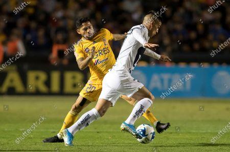Editorial picture of Tigres vs Pumas, Monterrey, Mexico - 29 Feb 2020