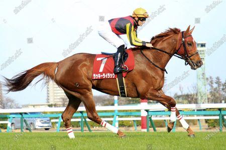 , Nakayama, Lucky Lilac with Mirco Demuro at Nakayama racecourse, JPN.
