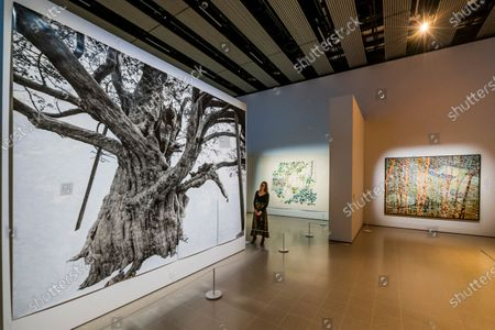 Editorial picture of 'Among The Trees' exhibition preview, Hayward Gallery, London, UK - 03 Mar 2020