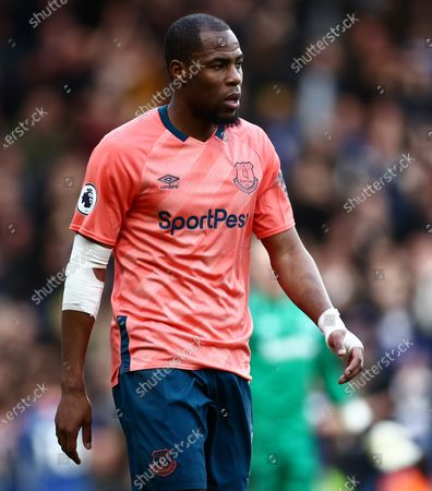 Djibril Sidibe of Everton.