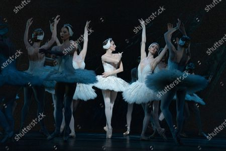 Stock Photo of Lauren Cuthbertson as Odette/Odile