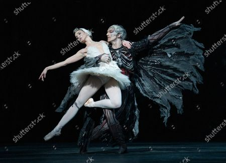 Stock Image of Lauren Cuthbertson as Odette/Odile, Gary Avis as Von Rothbart