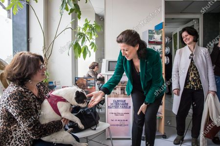 Former French Health Minister and mayoral candidate for Paris Agnes Buzyn (C) meets a dog and its owner during a visit at a veterinary clinic as part of her campaign in Paris, France, 07 March 2020. Buzyn took the candidacy for the 'La Republique En Marche' (LREM) party, replacing former candidat Benjamin Griveaux who dropped his candidacy in the Paris municipal elections on 14 February over publication of sexual imagery allegedly related to him on social media.