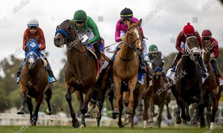 Stock Photo of Kingly with Mario Gutierrez battles with Got Stormy and Tyler Gaffalione early in the Kilroe Mile at Santa Anita Park in Arcadia, California on Evers/Eclipse Sportswire/CSM