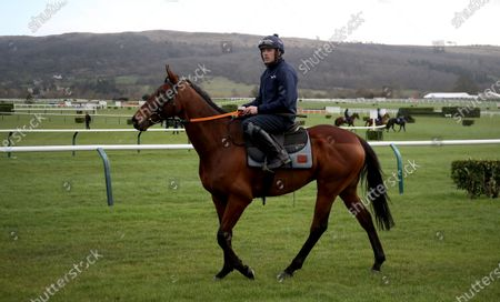 Ruby Walsh and Chacun Pour Soi