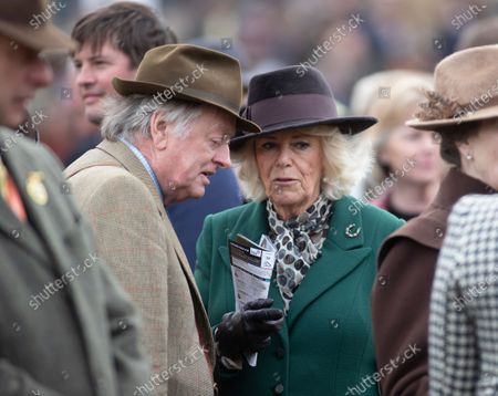 Editorial photo of Cheltenham Festival, Horse Racing, UK - 11 Mar 2020