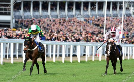 Cheltenham. DAME DE COMPAGNIE and Barry Geraghty win for trainer Nicky Henderson and owner JP McManus.