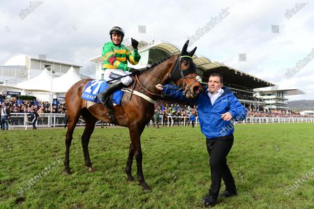 Cheltenham. DAME DE COMPAGNIE and Barry Geraghty greeted by groom David Lowther after win for trainer Nicky Henderson and owner JP McManus.