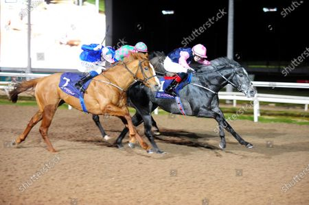 Stock Image of DUNDALK. DARK VADER and Dylan Brown McMonagle (far) beat You'resobeautiful (near) to win for trainer Joseph O'Brien. Healy Racing