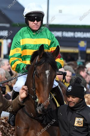 , Cheltenham, A wave of the sea with Barry Geraghty at Cheltenham racecourse, GB.