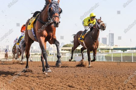 NATIVE APPEAL (IRE) ridden by Pat Dobbs wins the 8F Derristown Stud Handicap, race 3, at Jebel Ali, Dubai, UAE