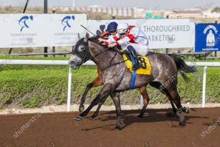 MYSTERY LAND (GB) ridden by Fabron Veron wins the 7F Irish Thoroughbred Marketing, race 7, at Jebel Ali, Dubai, UAE