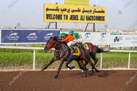 SHANAGHAI CITY (USA) ridden by Jesus Rosales wins the 5F Newbury Racecourse (UK), race 8, at Jebel Ali, Dubai, UAE