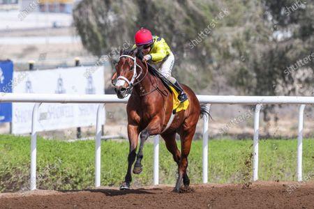 JUST A PENNY (IRE) ridden by Sam Hitchcott wins the 9.5F Shadwell Farm Handicap, race 2, at Jebel Ali, Dubai, UAE