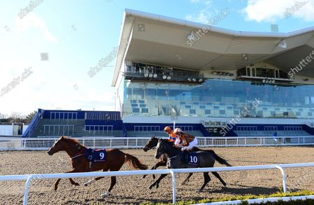 DUNDALK. The scene at the County Louth all weather venue for today's race meeting held behind closed doors because of Coronavirus showing the riderless GUILD in the field in The Crown Plaza Dundalk Race & Stay Handicap which was declared void because of an injured jockey on the track.