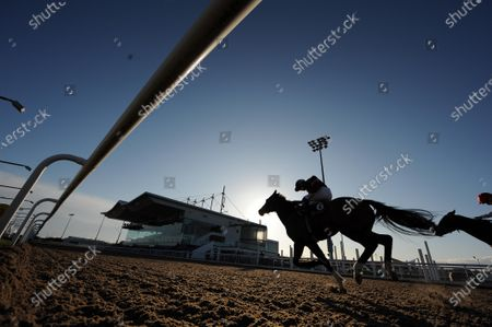 DUNDALK. The scene at the County Louth all weather venue for today's race meeting held behind closed doors because of Coronavirus showing LEQUINTO and Wayne Lordan winning against the setting sun.
