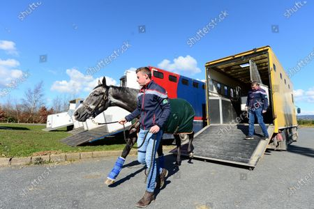 DUNDALK. DANCE ALONE and groom Jimmy Glynn arrive to the races ahead of today's race meeting behind closed doors because of Coronavirus.