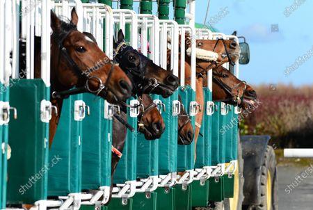 DUNDALK. Runners break from starting stalls in The Irishinjuredjockeys.com Handicap at today's race meeting behind closed doors because of Coronavirus.