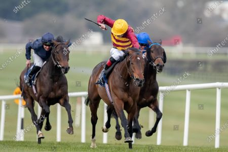 The Devoy Stakes. Declan McDonagh onboard Numerian comes home to win