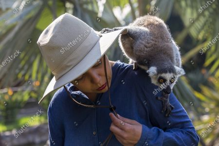 Lemur climbs on La Aurora Zoo spokeswoman Ana Lucia Vasquez, while the zoo is closed due to measures to contain the spread of the new coronavirus in Guatemala City