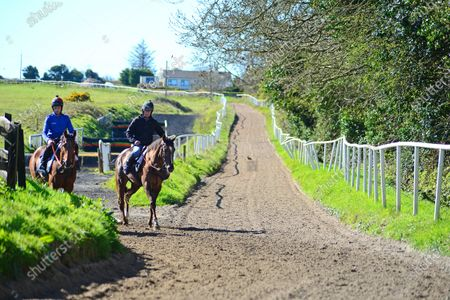 Tommy Cooper Stables, Farmer's Bridge, Tralee, Co.Kerry. Trainer Tommy Cooper and son Bryan riding out at morning exercise during the Covid-19 Coronavirus lockdown for horse racing.
